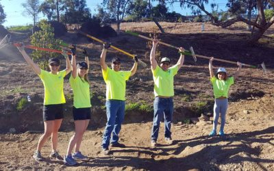 Helix Helps With MacArthur Park Restoration